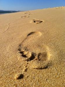 foot-115869_640